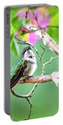 Ruby-throated Hummingbnird - 6763-002 Portable Battery Charger
