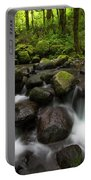 Ruckel Creek  Oregon, United States Portable Battery Charger