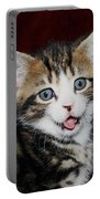 Rude Kitten Portable Battery Charger