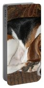 Ruff Day Portable Battery Charger