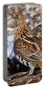 Ruffed Grouse On Alert Portable Battery Charger