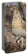 Ruffed Grouse On Mossy Log Portable Battery Charger