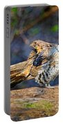 Ruffed Grouse Preening Portable Battery Charger