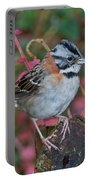 Rufous-collared Sparrow Portable Battery Charger
