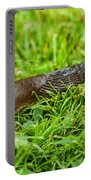 Rufous Garden Slug Portable Battery Charger