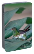 Rufous-tailed Hummingbird On Nest Portable Battery Charger