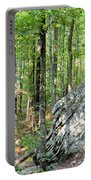 Rugged Terrain Of Boulder Field Portable Battery Charger