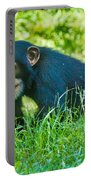 Running Chimp Portable Battery Charger