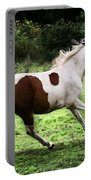 Running Pinto Horse Portable Battery Charger