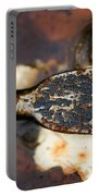 Rusted Camouflage Portable Battery Charger