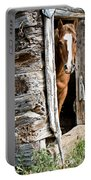 Rustic Horse Scene Portable Battery Charger