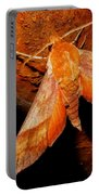 Rusty Sphinx Moth Portable Battery Charger