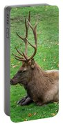 Rut Rest Portable Battery Charger