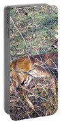 Rutting Buck Portable Battery Charger