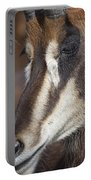 Sable Antelope V5 Portable Battery Charger