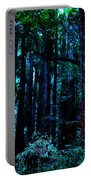 Sacred Space Portable Battery Charger