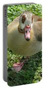 Sad Goose Portable Battery Charger