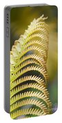 Sadleria Cyatheoides Amau Fern Maui Hawaii Portable Battery Charger