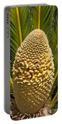 Sago Palm Seed Pod Portable Battery Charger
