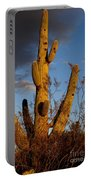 Saguaro 2 Portable Battery Charger
