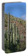 Saguaro Forest In The Superstitions Portable Battery Charger