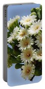 Saguaro In Bloom In The Superstition Mountains Portable Battery Charger