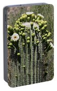 Saguaro In Bloom Portable Battery Charger