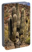 Saguaro Of Many Arms Portable Battery Charger