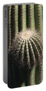 Saguaro With New Arm Portable Battery Charger