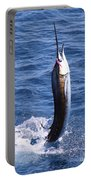 Sailfish On Fly Portable Battery Charger