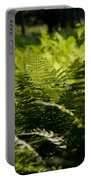 Sailing The Fern Sea Portable Battery Charger