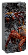 Sally Light Foot Crabs Galapagos Portable Battery Charger