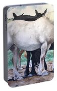 Sally's Horses Portable Battery Charger