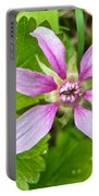 Salmonberry  On Trail To Wapta Falls In Yoho Np-bc  Portable Battery Charger