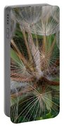 Salsify Seeds - 1 Portable Battery Charger