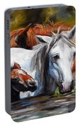 Salt River Foal Portable Battery Charger