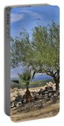 Salton Sea Oasis Portable Battery Charger