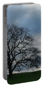 Same Tree Many Skies 10 Portable Battery Charger