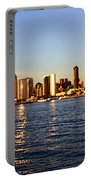 San Diego Skyline Portable Battery Charger