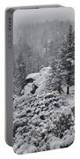San Jacinto December Wilderness Portable Battery Charger
