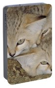 Sand Cat Felis Margarita Portable Battery Charger