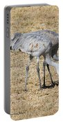 Sand Hill Cranes Eat Togeather Portable Battery Charger