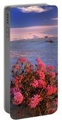 Sand Verbenas At Sunset White Sands National Monument Portable Battery Charger