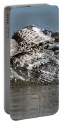 Sanderling Pictures 29 Portable Battery Charger