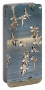 Sanderlings And Dunlins In Flight Portable Battery Charger