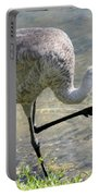 Sandhill Crane Balancing On One Leg Portable Battery Charger by Sabrina L Ryan