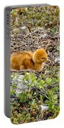 Sandhill Crane Chick Portable Battery Charger