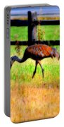 Sandhill Crane IIi Portable Battery Charger