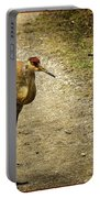 Sandhill Crane On The Road Portable Battery Charger