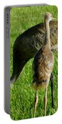 Sandhill Crane With Chick II Portable Battery Charger